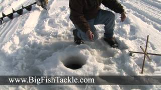 How to land big fish through the ice while ice fishing.