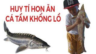 """Lần đầu Huy tí hon đi """" Mát - xa """" cá, ăn cá Tầm nặng hơn 2kg II TRẢI NGHIỆM MỚI"""