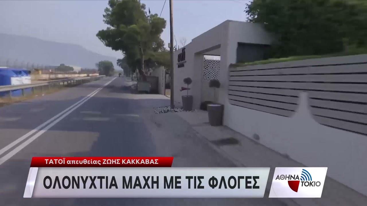 Οδοιπορικό της ΕΡΤ στις καμμένες περιοχές της Αττικής | 04/08/21 | ΕΡΤ