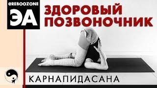 Как избавиться от боли в спине с помощью Йоги?