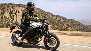 Suzuki SV650 First Ride Review at RevZilla.com