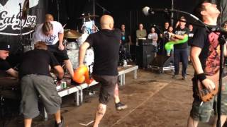 Dog eat dog - who's the king? Live at ieperfest (side view)