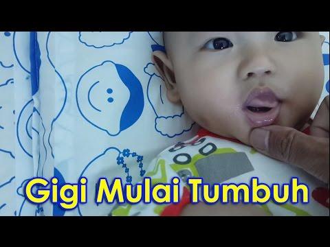 Video Gigi 'Baby A' mulai tumbuh, gusi gatal, semua diemutin