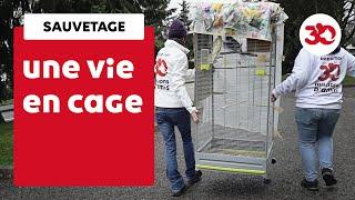 Chaque Jour, La Fondation 30 Millions D'Amis Est Sur Le Terrain Pour Sauver Les Animaux