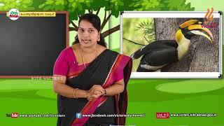 Standard 4 | Malayalam | Class – 16