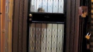"""""""VIDEO SALAD #15"""" BY MAGGIE LEE"""