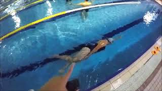 【課程筆記系列】自由式游泳側身踢水要點