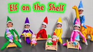 Elf on the Shelf 2020!!! All Colors Elf on the Shelf and Elf Babies!