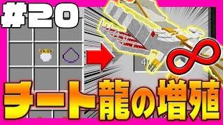 【マイクラ】おらチートやるわ Infinity(S3)#20 チート龍をヤバイ粉を使って無限増殖【マインクラフト実況】