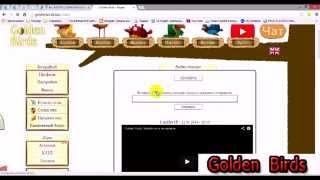Golden Birds Как зарабатывать в golden birds 1000 в день