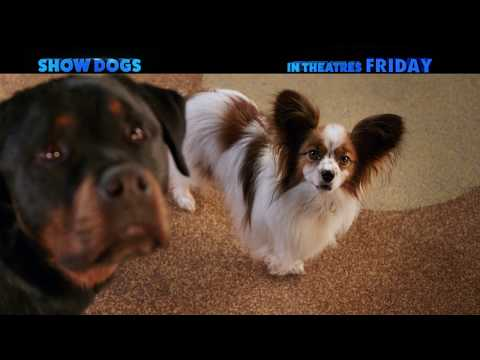 Show Dogs Show Dogs (TV Spot 'So Good')