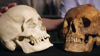 3D Printing a Human Skull | Secrets of Bones | BBC Earth