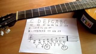 Cum se găsesc notele pe chitară |  Lecție Răpan Dănuț