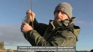 влог. Рыбалка в Финляндии. ловля судака. vlog. fishing. fishing in Finland. vol 2