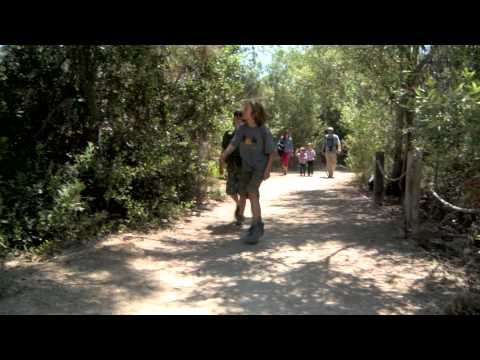 Natural Families | Children & Nature Network