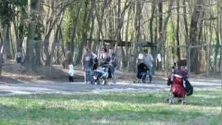 preview picture of video 'AgriturismiUmbria.Net - Parco del Sole in Umbria'