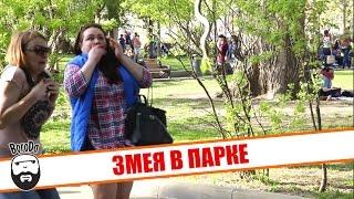 Змея в парке Горького (пранк)