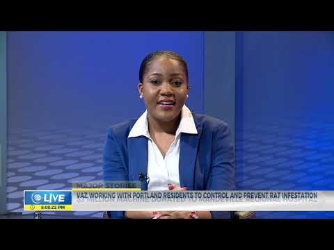CVM LIVE - #MajorStories - June 15, 2019