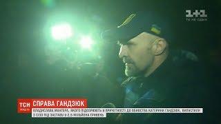 Справа Гандзюк: підозрюваного Владислава Мангера випустили під заставу