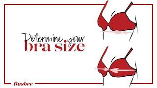 The BEST Way to Determine Your Bra Size!!