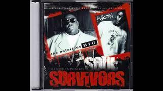 I Wanna Fuck You   Akon ft Biggie DJ Noodles