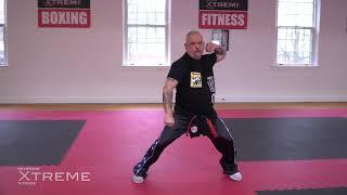 Kata 10.3 – Brown Belt – Tekki Nidan – Practice