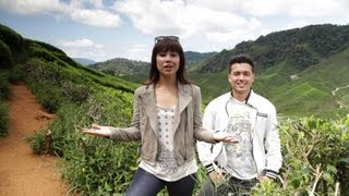 preview picture of video 'The Right Room - Episode 05 (Century Pines Resort Cameron Highlands for Family Retreats)'