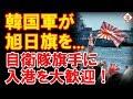 韓国海軍が自衛艦を旭日旗を手に大歓迎してた!時系列整理で攻めの発信を!!