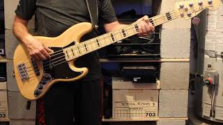 Dan Fogelberg - Lessons Learned (Bass Cover)