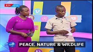 YouthCafe: Peace, nature and wildlife
