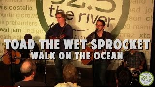 T.W.S.~walk on the ocean-live