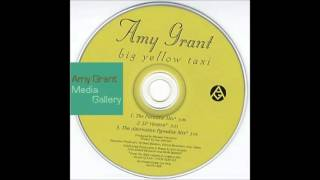 Big Yellow Taxi (The Alternative Paradise Mix) - Amy Grant