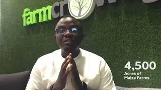 Farmcrowdy announces crop farming for 2018