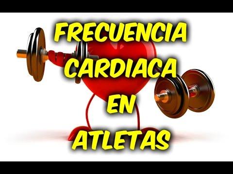 Propolis contraindicaciones hipertensión