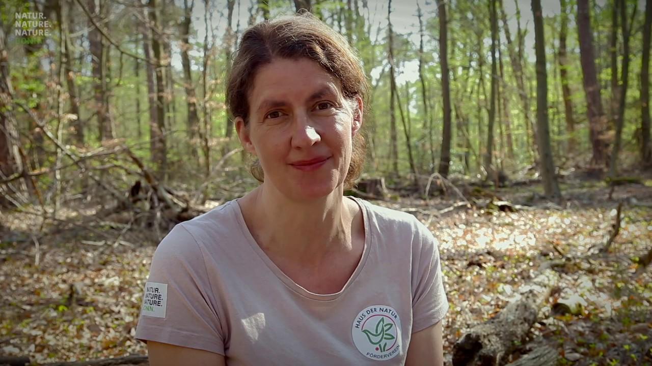Video: Umweltbildung am Haus der Natur: Keimlinge