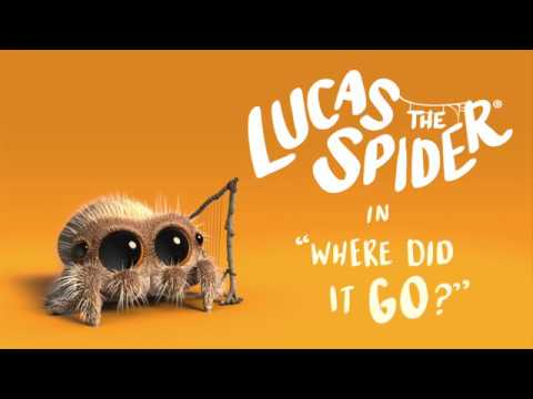 Lucas the Spider in Where Did It Go