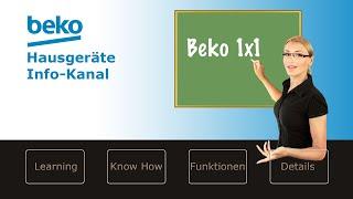 Türanschlagwechsel bei der Beko Kühl-Gefrierkombination RCHA300K30XB
