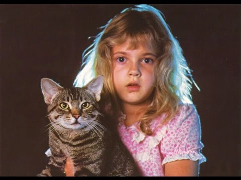 CAT'S EYE (1985) REVIEW 2017