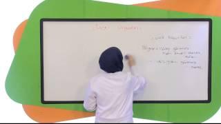 7.Sınıf Fen ve Teknoloji Görüntülü Eğitim Seti Duyu Organları