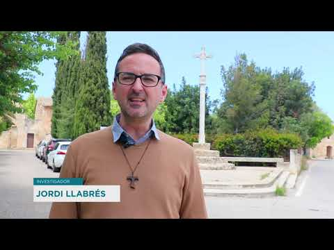 Creus de Terme del municipi de Palma