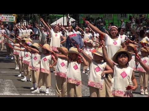 認定こども園みかづき幼稚園 第65回よさこい祭り
