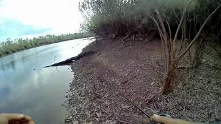 preview picture of video 'Casting Snakehead Kerandang - Palangka Raya Danau Hanjalutung'