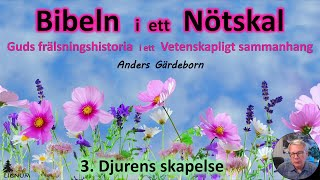 Thumbnail for video: Bibeln i ett Nötskal Del 3: Djurens skapelse - Anders Gärdeborn