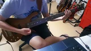 Plain - 311 (bass cover)
