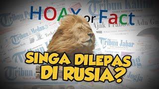 Hoax or Fact: Presiden Rusia Lepas Singa agar Warga Tak Keluar Rumah Cegah Virus Corona, Hoax