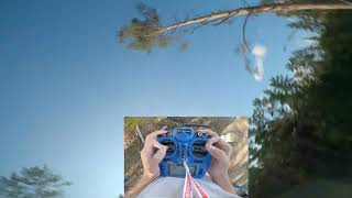 Untill the bigfoot will get it #shorts #drone #fps #fpvfreestyle