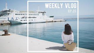 Weekly Vlog 23 第一次和德国朋友出去旅游 古董市场淘到宝 家庭烧烤