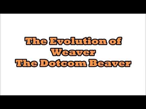 Evolution of Weaver the Beaver - Testimonial for NJ Web Design company