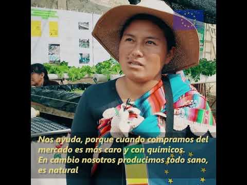 Video CultivosQueMejoranlaVida 20181010 ALTA