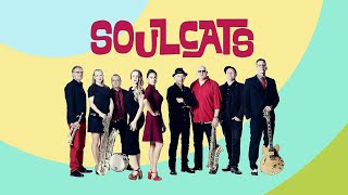 Soulcats Shworeel